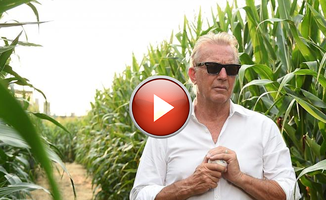 Kevin Costner leads Yankees and White Sox from cornfield onto the Field of Dreams